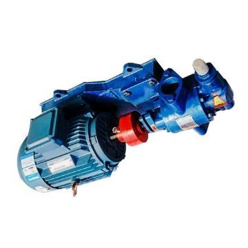 Toko SQP43-66-32-1CC-18 Double Vane Pump