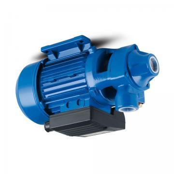Toko SQP(S)41 Double Vane Pump